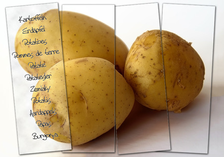 labeling: Potatoes with stripes of glass and multilangual labeling