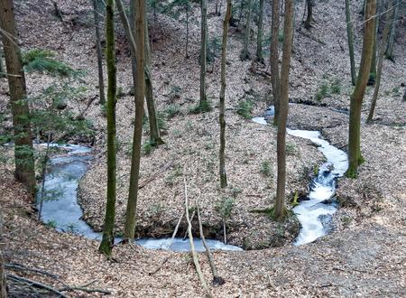 frozen creek: frozen meandering creek in the winter forest