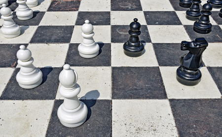 chequer: figures and playing field for garden chess Stock Photo