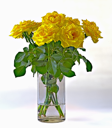 A Bunch Of Yellow Roses In A Vase Of Glass Stock Photo Picture And