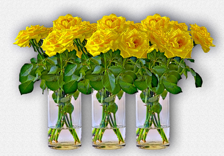 upright row: three yellow bunches of roses in vases of glass