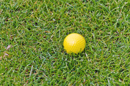 sward: yellow golf ball on  green lawn