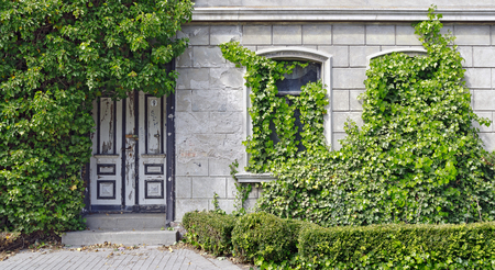 overrun: heavy by ivy overgrown front of a house with the number nine Stock Photo