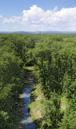 alluvial: alluvial forest near the river Danube with water course and the not activated nuclear power plant of Zwentendorf at the horizon, Tulln, Austria