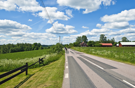 summer landscape along a country road in the south of Sweden Stock Photo