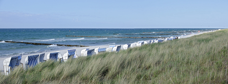 grass-covered dike and sandy shore with white beach chairs at the Baltic sea secured by groynes, Zingst, Germany