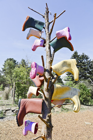 colorful rubber boots sticking on the branches of a bald tree