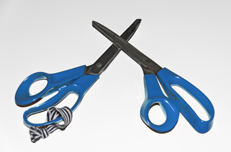 two scissors for tailoring with blue handles isolated on white Stock Photo