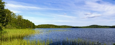 panoramic view across the lake Gissen with flat riparian zone vegetated by reed, Sweden