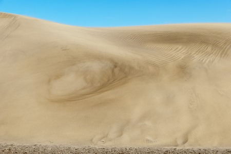 sand  whirl at the dunes of Maspalomas on Grand Canary, Spain