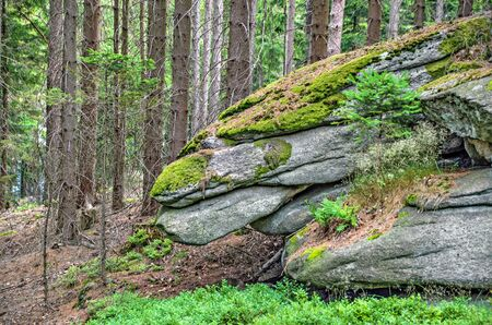 granite rocks stacked on top of each other shaped like a dragon head in the forest near the mountain Mandelstein at the region Forestquarter, Austria