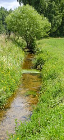 Small stream running through a green meadow at the quarter