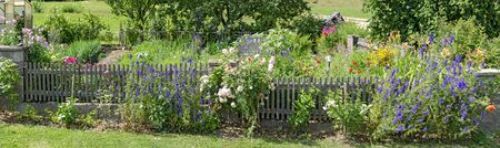 fenced flourishing farmers garden in the region Waldviertel in summer, Austria 版權商用圖片