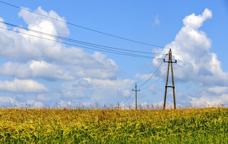 power pole and supply line above a grain field under a blue sky with white clouds in summer in the region Waldviertel, Austria Stock fotó