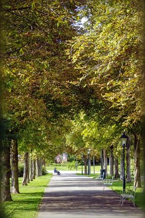 alley of horse-chestnut trees autumnally coloured in the so-called Doblhoffpark at the small town of Baden, Austria