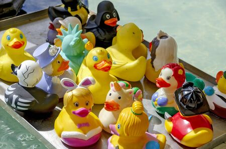 tray with colorful plastic ducklings for bathing Reklamní fotografie
