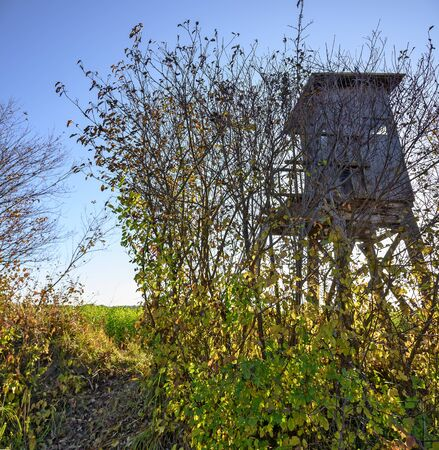 raised stand for hunting beside a wildbush hedge at the edge of a field in autumn, Austria
