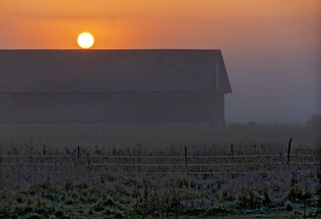 farm landscape with sun disk above a barn at strong mist