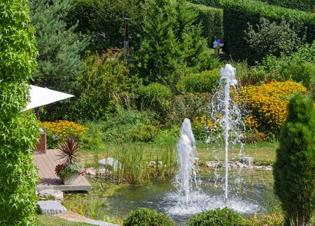 pond with water fountains in a summerly garden Stock Photo