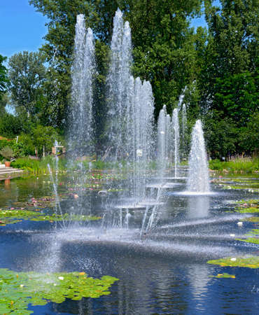 trick fountains in a pond with flourishing water lilies in an ornamental garden at Tulln, Austria