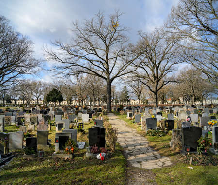 Row of graves with tomb stones and leafless trees at the Viennese Central cemetery on a sunny winter day, Austria Standard-Bild
