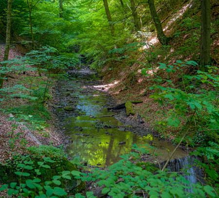 watercourse in the danube valley near Saint Andrae-Woerdern, the so called Hagenbach gorge, Austria