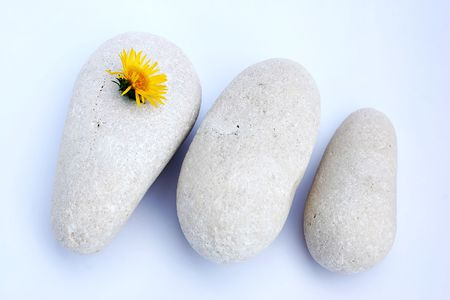 Three white stones and flower photo