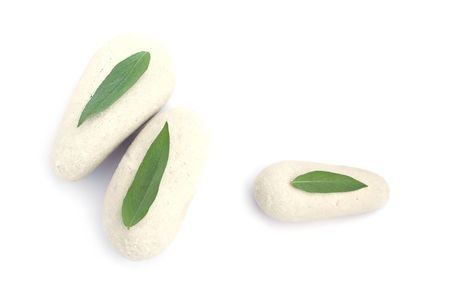 Three stones and leaves of sage photo