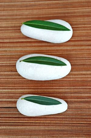 Three white stones and green leaves photo