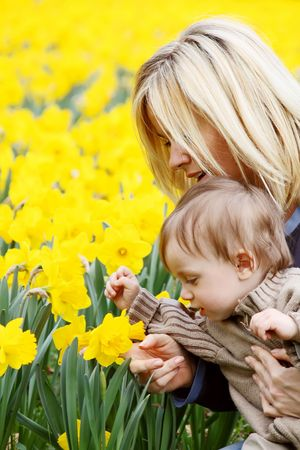 A young mother with her son and a bed of daffodils photo