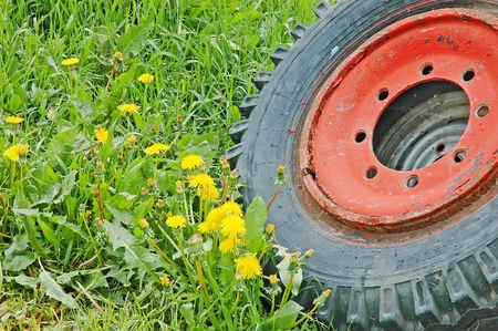 The old tractor tire lying in the grass photo