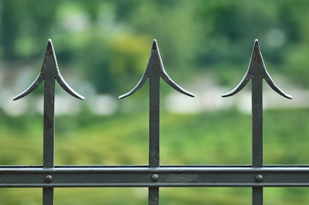 The iron fence on a green background .  photo