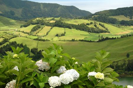Azores Island landscape with a green lush view Stock Photo