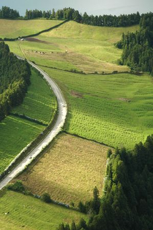 Azores Island landscape with a green lush view with curvy and windy roads
