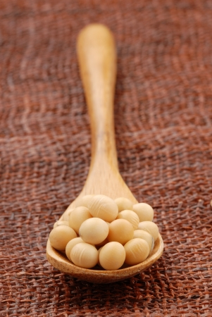 Soy beans  on a wood spoon   photo
