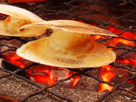 Grilled scallop    photo