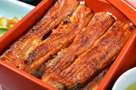 dinne: Rice with grilled and flavored eel