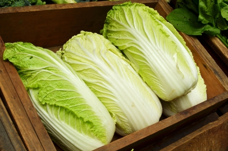 Chinese cabbage for sale in the market Stock Photo