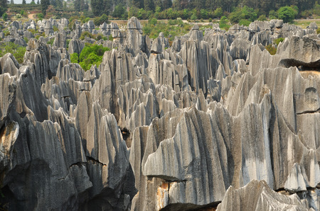 kunming:  Stone forest national park in Yunnan province, China