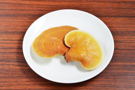 lucidum: Ganoderma lucidum on on white plate