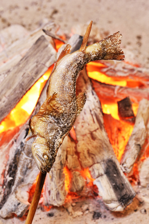 Fish Ayu with salt being charcoal broiled in Japan. Stock Photo