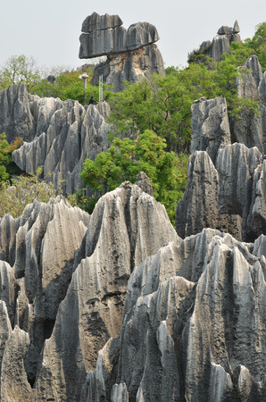 Stone forest national park in Yunnan province, China