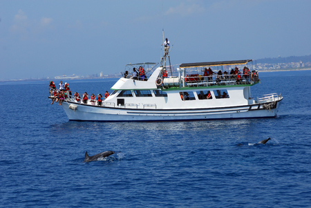 The sightseeing ship goes to sea enjoy the whale tun