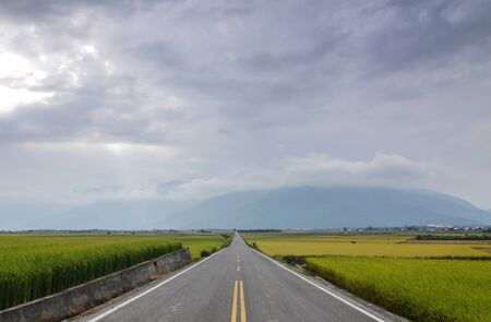 The road pass trough green rice farm at Taitung, Taiwan