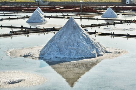 Dried salt at salt pan ready for harvesting in Tainan, Taiwan Salt pans in Tainan, Taiwan