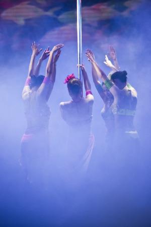 Pole Dance Performance - colourful lighting costumes pole dance performance