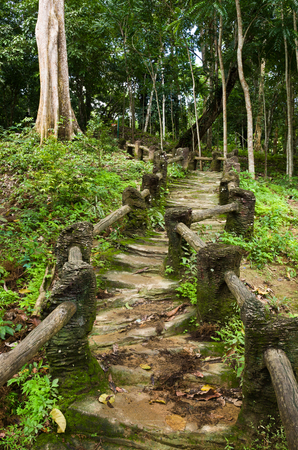 suelo arenoso: Natural man made wood and soil steps in jungle Foto de archivo
