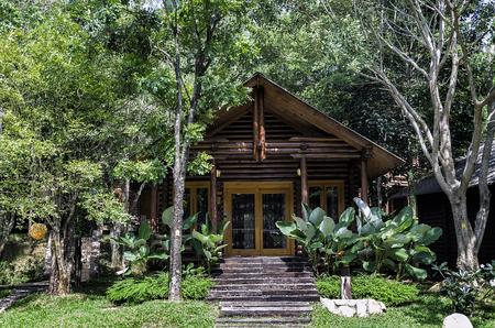 Cozy log house amongst green environment.