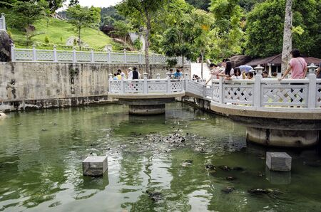 Unidentified visitors are feeding turtles at Kek Lok Si temple Turtle Liberation Pond.