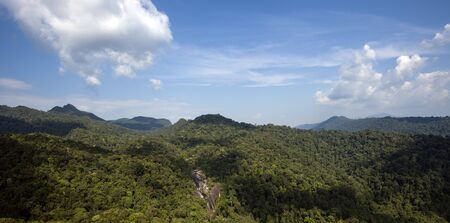 Rainforest Machincang mountain of Langkawi Island, Malaysia